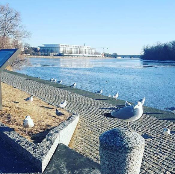 Progulka-po-naberezhnoj-v-Dzhordzhtaune-Georgetown-Waterfront-Park