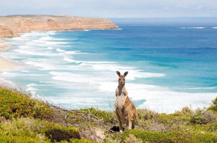 Что нужно для переезда в Австралию